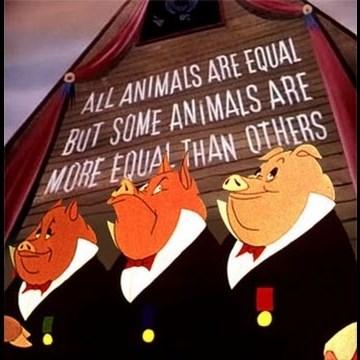 animal-farm-pigs