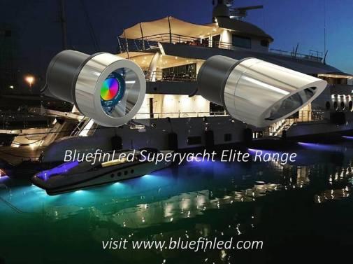 bluefin lee