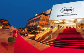 cannes film nvb