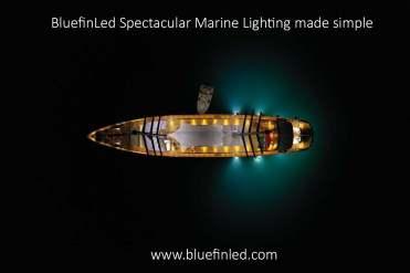 bluefin myss